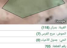 قطعة أرض للبيع في شفا بدران ,مرج الفرس (موقع متميز  جدا ) للمهتمين فقط و السعر كاش فقط