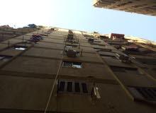 apartment area 55555 sqm for sale