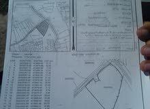 أرض زراعية في مركز مدينة صحار