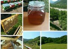 عسل طبيعي نقي من أذربيجان
