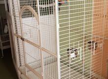 big parrot cage large size