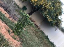 قطعة أرض في تاجوراء مقابل مستشفى القلب خلف مشروع الجامعة