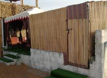 عزبه للايجار ولايه بديه  في مكان جميل جريب الخدمات 96799272