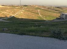قطعة ارض للبيع في شفا بدران حوض المكمان