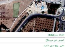 الكرك-جامعة مؤتة-الباب الشمالي بجانب مسجد جامعة مؤتة