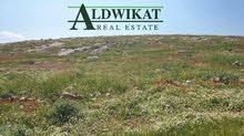 ارض مميزة للبيع في اجمل مناطق ذيبان , مساحة الارض 13 دونم