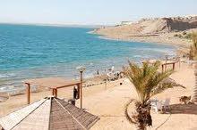 رحلات للبحر الميت وحمامات ماعين يوميا