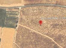 ارض مساحتها 2 هكتار