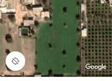 قطعة ارض في قصربن غشير