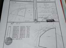 ارض زراعيه رقم واحد على الخط البحري حي عاصم مقابل التحلية وقريب الدوار  المساحة9