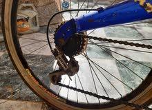 دراجه راليكس  للبيع