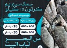 اطــــــلب الان / سمك طازج جودة ممتازة توصيل للمنازل جميع انواع الاسماك