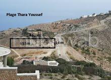 أرض محفظة للبيع في موقع رائع بمدينة الحسيمة