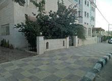 شقة ارضية ((طابقية )) حديقة كبيرة كراج خاص للبيع بسعر مغري