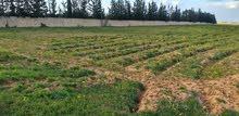 .قطعة ارض للبيع مساحتها 4000م