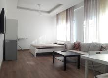 University Street apartment for rent with Studio rooms
