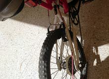 Sportex bicycle 20 in. tires red color