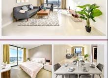 2 BHK Modern Fully Furnished Brand New Apartment with Balcony for rent in Amwaj.