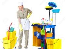 يوجد خادمات لتنظيف المنازل والشقق