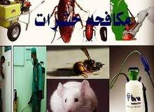رش مبيدات حشريه لجميع انواع الحشرات