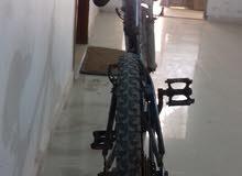 دراجة إيطاليا رقم 24