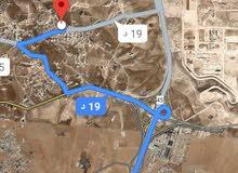 للبيع ارض 12 دونم في البيضاء شارع الميه