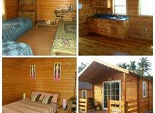 شقق منازل خشبية حسب المساحه والطلاب سعر المتر ابتداء من 300دولار