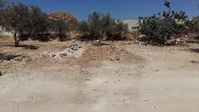 أرض مميزة للبيع في عين الباشا (شويحي الشرقي)