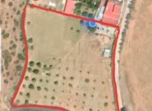 اراضي للبيع في طنجة