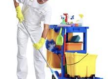 مطلوب عمال نظافة