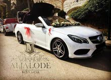 Mercedes Benz E 250 car is available for a Day rent