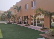 Villa property for rent Jeddah - Obhur Al Shamaliyah directly from the owner