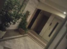 apartment for rent Ground Floor in Cairo - Mokattam