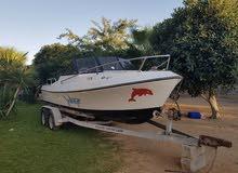 قارب للبيع قالب امريكي محرك ميركوري 115