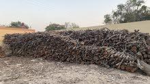 حطب سدر للشوي او التنور للبيع