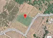 ارض للبيعارض للبيع بمنطقة  منزل بلڨاسم معتمدية قليبية تشرف مباشرة على الطريق الم