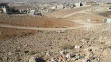قطعة ارض مميزة على شارعين منطقة ابو صياح