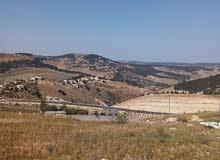 مطلوب أراضي بجنوب عمان بشكل عام