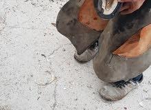 حذاي للخيول