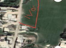 ارض مخصصة للسكن مساحتا 1750 متر
