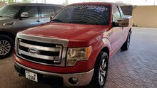 Ford F150 Rouch
