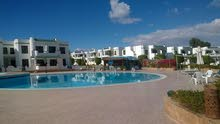 special apartment in South Sinai for sale
