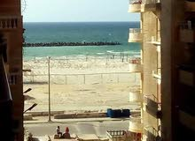 امتلك شقة تشطيب سوبر لوكس شاطئ النخيل الإسكندرية مسجلة في الجهاز