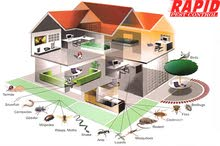 professional pest control for house & building flats 100% guarantee