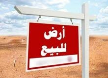عاااااجل و فرصه استثمار يوجد اراض تبدء من 20فدان ف العاصمه