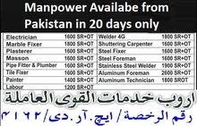 تتوفر جميع أنواع عامل من باكستان في غضون 20 يومًا