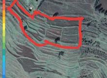ارض للبيع في حمص