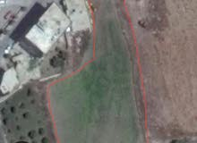 ارض للبيع في رشاف