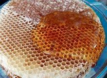 جميع منتجات النحل متوفره…  كبير نحالين الشمال