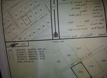ارخص ارض في الدريز حي المعمور